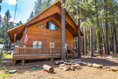 Coconino County Single Family Home For Sale: 1326 Park Drive