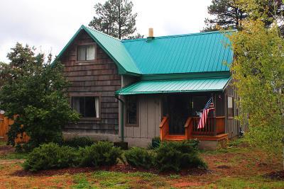 Flagstaff Single Family Home For Sale: 90 Kiowa