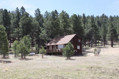 Flagstaff Single Family Home For Sale: 6515 N Hawk Hill Road