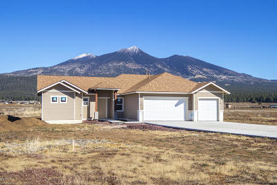 Flagstaff Single Family Home For Sale: 4697 W Laskin Trail