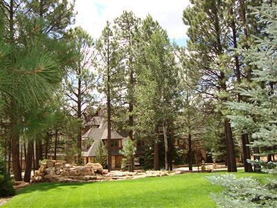 Flagstaff Single Family Home For Sale: 5015 E Lake Country Road