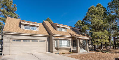 Flagstaff Single Family Home For Sale: 4224 E Broken Rock Loop