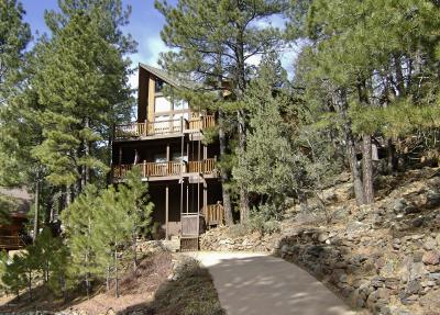 Coconino County Single Family Home For Sale: 1070 E Lake Meadow Circle