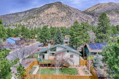 Coconino County Single Family Home For Sale: 2501 E Matterhorn Drive