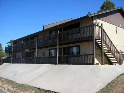 Flagstaff Multi Family Home For Sale: 3818 S Walapai Drive
