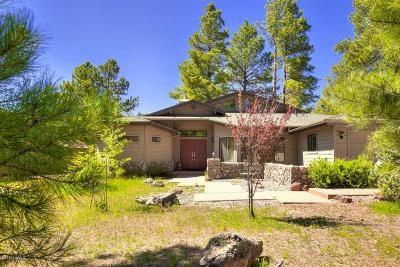 Flagstaff Single Family Home For Sale: 3002 Bear Howard