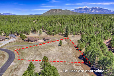 Residential Lots & Land For Sale: 4607 Brackin Ranch Road