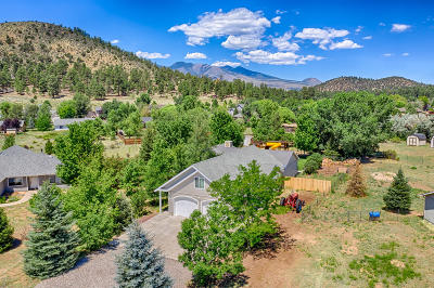 Coconino County Single Family Home For Sale: 9690 Legacy Lane