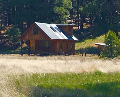 Flagstaff Single Family Home For Sale: 6131 Big Game Trail