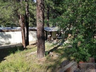 Coconino County Mobile/Manufactured For Sale: 3039 Ancient Trail