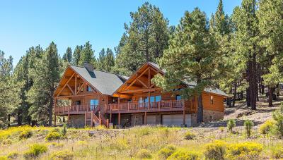 Flagstaff Single Family Home For Sale: 9405 W Hashknife Trail