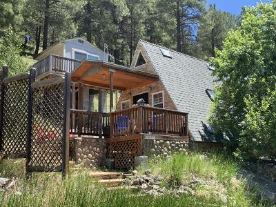 Flagstaff Single Family Home For Sale: 2955 Ancient Trail