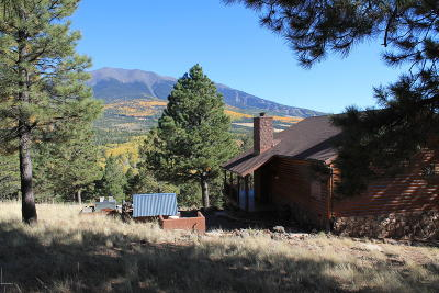 Flagstaff Single Family Home For Sale: Hochderffer Hills