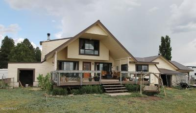 Mormon Lake Single Family Home For Sale: 563 Lots A Luck Lane
