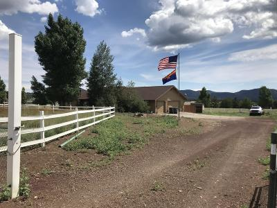 Flagstaff Single Family Home For Sale: 12315 N Eagle Road