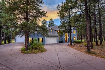 Coconino County Single Family Home For Sale: 3095 W Kiltie Lane