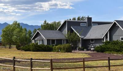 Flagstaff Single Family Home For Sale: 10093 E Palomino Road