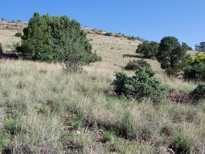 Prescott, Prescott Valley, Chino Valley, Dewey-humboldt Residential Lots & Land For Sale: 752 Sunrise Boulevard