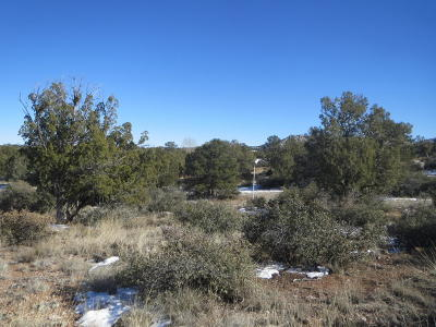 Prescott, Dewey-humboldt, Prescott Valley, Chino Valley Residential Lots & Land For Sale: 15340 N Badlands Circle