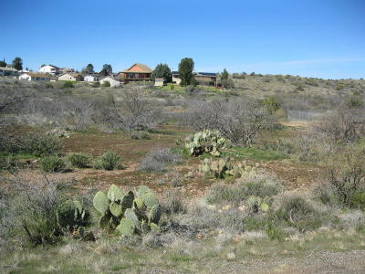 Mayer Residential Lots & Land For Sale: 13778 S Bluebird Lane