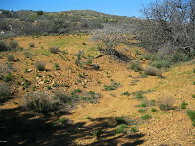 Mayer Residential Lots & Land For Sale: 19613 E Chaparral Drive
