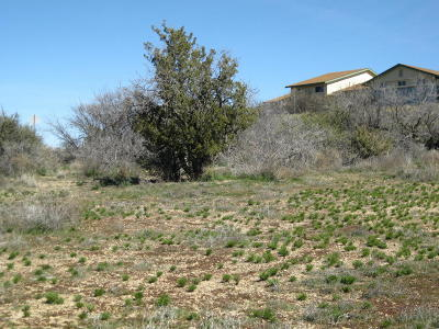 Mayer Residential Lots & Land For Sale: 16470 S Cordes Lakes Drive