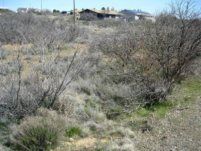 Mayer Residential Lots & Land For Sale: 20038 E Lakeside Road