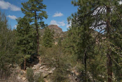 Hassayampa Village Community Residential Lots & Land For Sale: 545 Lodge Trail Circle