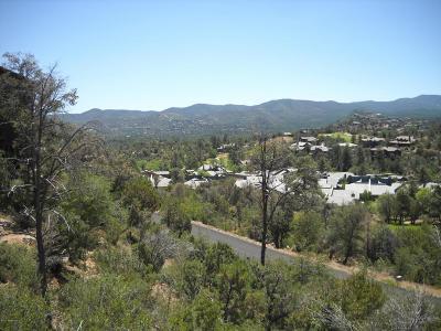 Hassayampa Village Community Residential Lots & Land For Sale: 698 Woodridge Lane