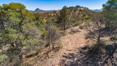 Prescott Residential Lots & Land For Sale: 2020 N Holly Drive