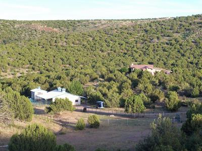 Prescott AZ Single Family Home For Sale: $1,246,000