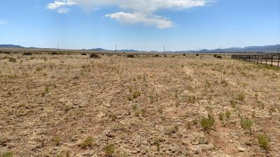 Prescott Valley Residential Lots & Land For Sale: 6 N Winston Way