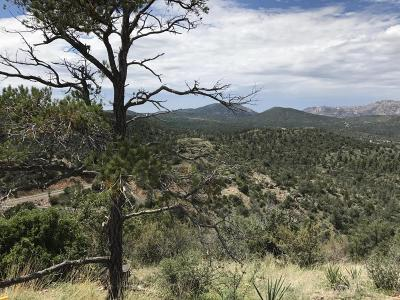 Prescott AZ Residential Lots & Land For Sale: $99,500