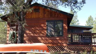 Prescott Single Family Home For Sale: 1 Granite Basin Summer Home