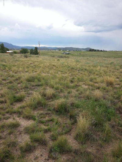 Prescott Valley Residential Lots & Land For Sale: 8085 E Dog Ranch Road