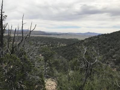 Yavapai County Residential Lots & Land For Sale: 1494 N Lion Canyon Dr