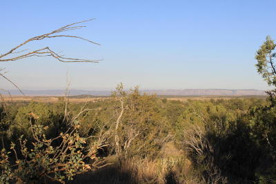 Yavapai County Residential Lots & Land For Sale: Seligman