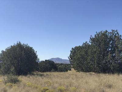 Chino Valley Residential Lots & Land For Sale: 5065 Dingo Lane
