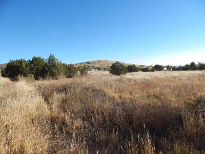 Chino Valley Residential Lots & Land For Sale: 2725 N Shawnee Trail