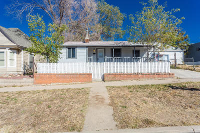 Prescott Single Family Home For Sale: 309 N Pleasant Street