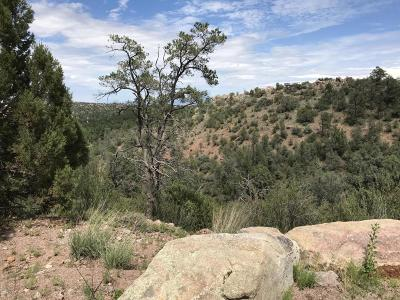 Prescott AZ Residential Lots & Land For Sale: $175,000