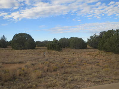 Prescott, Prescott Valley, Chino Valley, Dewey-humboldt Residential Lots & Land For Sale: 5005 W Vengeance Trail
