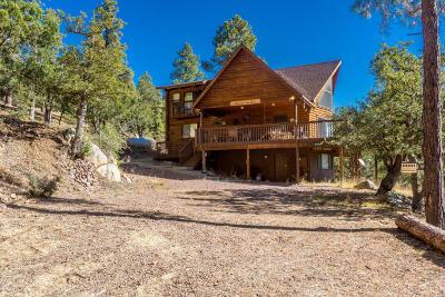 Prescott, Prescott Valley, Dewey-humboldt, Chino Valley Single Family Home For Sale: 6705 S Golden Dollar Lane