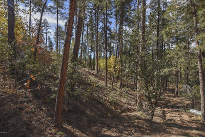 Residential Lots & Land For Sale: 3190 D W Tree Tops Trail