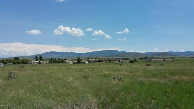 Prescott Valley Residential Lots & Land For Sale: 7400 E Trottin Down Road