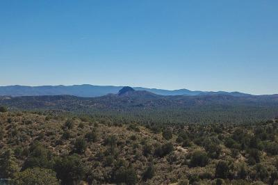 Prescott Residential Lots & Land For Sale: 00 W Iron Springs Road
