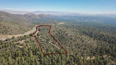 Prescott Residential Lots & Land For Sale: 5101 W Iron Springs Road