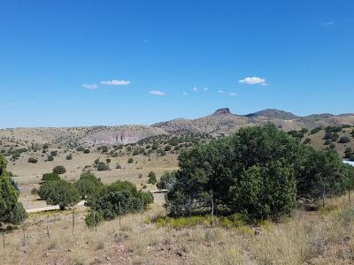 Paulden Residential Lots & Land For Sale: 1401 E Reata Trail