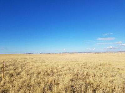 Prescott Valley Residential Lots & Land For Sale: Lot B-2 Portion Of Lot 9