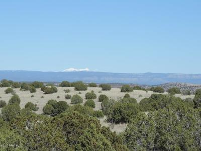 Chino Valley Residential Lots & Land For Sale: 1579 W Escondido Trail